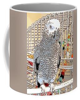 African Grey Parrot In Pencil Coffee Mug