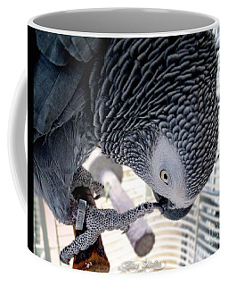 Coffee Mug featuring the photograph African Grey Parrot by Melissa Messick