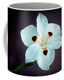 Coffee Mug featuring the photograph African Iris by AJ Schibig