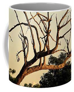 African Leopard  Coffee Mug