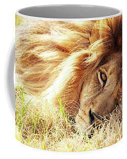 African Lion Closeup Lying In Grass Coffee Mug