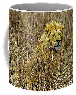 African Lion In Camouflage Coffee Mug