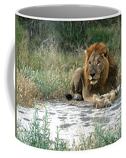 African Lion Coffee Mug