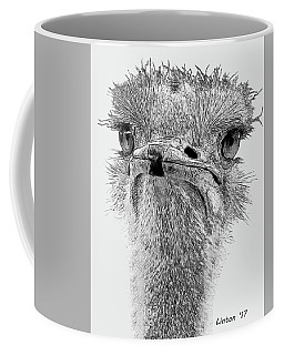 African Ostrich Sketch Coffee Mug