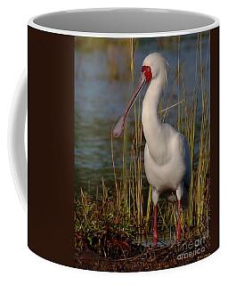 African Spoonbill Coffee Mug by Myrna Bradshaw