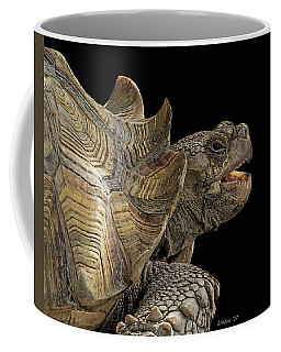 African Spurred Tortoise Coffee Mug