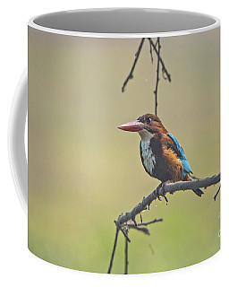 After A Dive Coffee Mug by Pravine Chester