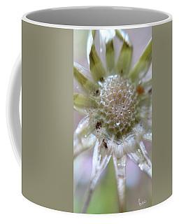 After The Glitter Fades Coffee Mug