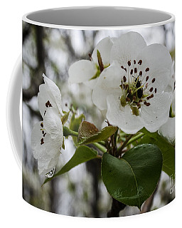 Coffee Mug featuring the photograph After The Rain  2 by Donna Brown