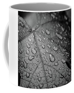 After The Rain #2 Coffee Mug