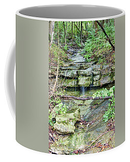 Coffee Mug featuring the photograph After The Rain by Cricket Hackmann