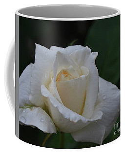 Coffee Mug featuring the photograph After The Rain by Debby Pueschel