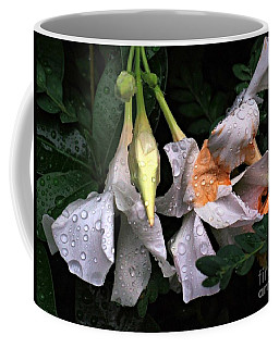 After The Rain - Flower Photography Coffee Mug