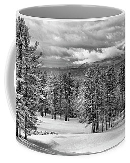 After The Snow  Coffee Mug by Betty Pauwels