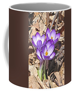 After The Snow Has Gone Coffee Mug