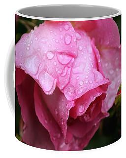 After The Spring Rain Coffee Mug