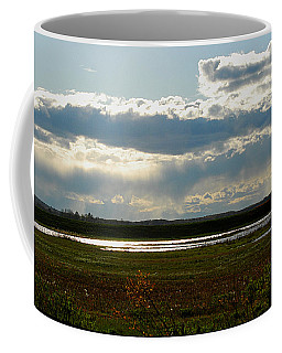 After The Storm Coffee Mug by Nancy Landry