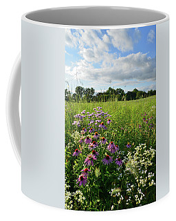 Afternoon In Moraine Hills State Park Coffee Mug