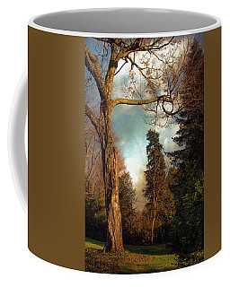 Coffee Mug featuring the photograph Afternoon  by John Rivera