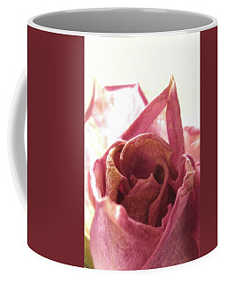 Aged Rose Coffee Mug by Mary Ellen Frazee