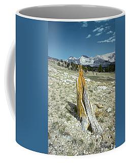 Aged To Perfection Coffee Mug