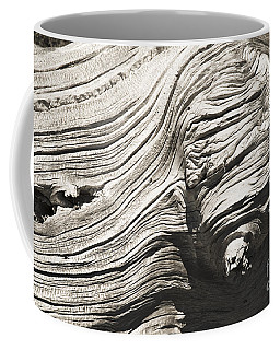 Coffee Mug featuring the photograph Aging Of Time by Yulia Kazansky