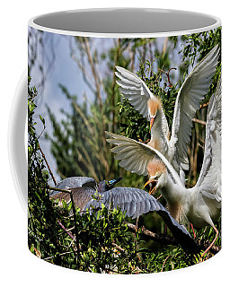 Aggression Between Cattle Egrets And Tricolored Heron Coffee Mug