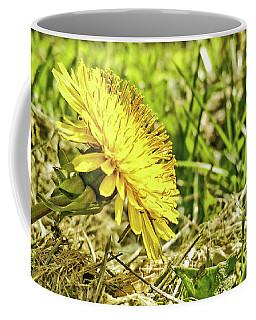 Coffee Mug featuring the photograph Aim High by Robert Knight