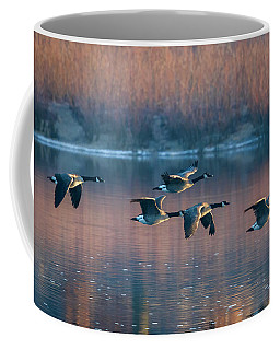 Coffee Mug featuring the photograph Air Canada by Ricky L Jones