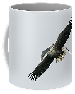Airspace Infringement Coffee Mug