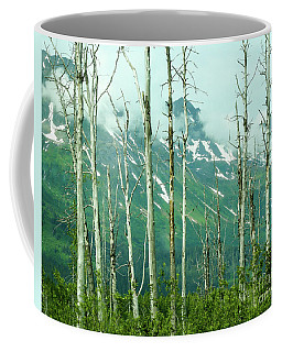 Coffee Mug featuring the photograph Alaska Landscape by Nick Boren