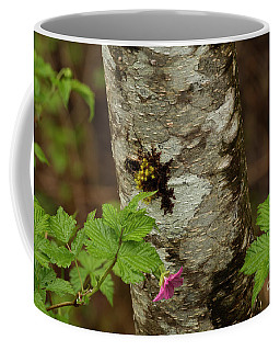 Alaska Tree Trunk Coffee Mug