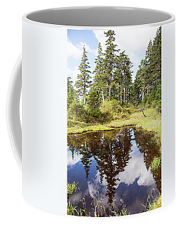 Alaskan Mirror  Coffee Mug