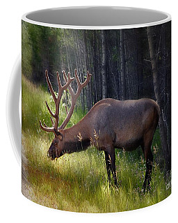 Alberta Elk  Coffee Mug
