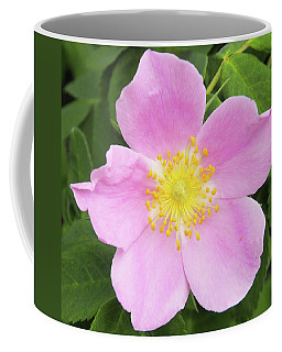 Alberta Rose Coffee Mug