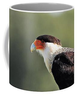Alert Caracara  Coffee Mug
