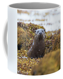 Alert Female Otter Coffee Mug