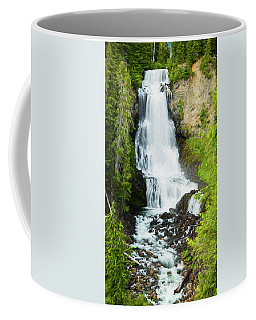 Coffee Mug featuring the photograph Alexander Falls - 2 by Stephen Stookey