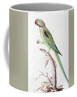Alexandrine Parakeet Coffee Mug
