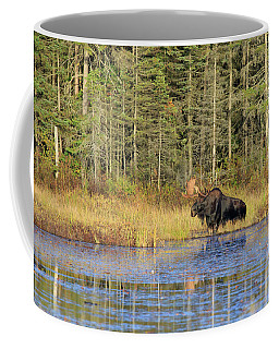 Algonquin Bull Moose Coffee Mug