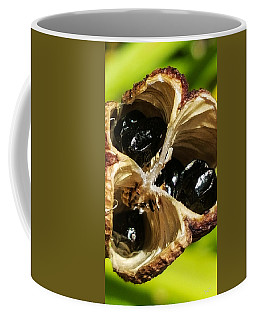 Coffee Mug featuring the photograph Alien Scream by Bruce Carpenter