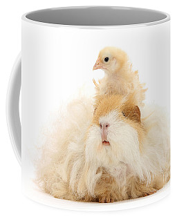 All Frizzed Up And Ready To Go Coffee Mug