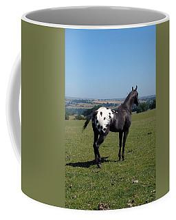 All He Surveys Coffee Mug