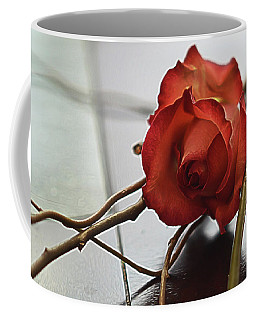 Coffee Mug featuring the photograph All Tangled Up by Diana Mary Sharpton