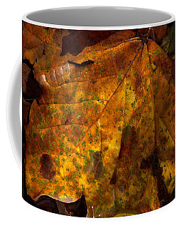 All The Leaves Are Brown Coffee Mug