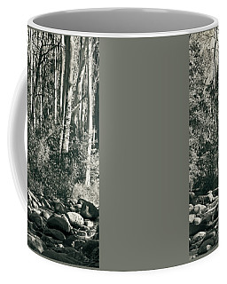 Coffee Mug featuring the photograph All Was Tranquil by Linda Lees