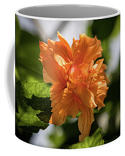 Allan Gardens Orange Coffee Mug