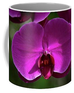 Allan Gardens Orchid Coffee Mug
