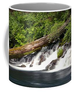 Allen Springs On The Metolius River Coffee Mug