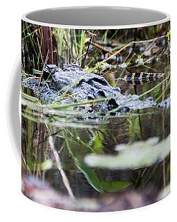 Alligator And Hatchling-2 Coffee Mug